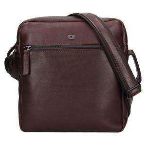 Pánská kožená taška Daag Paul – tmavě hnědá 13341