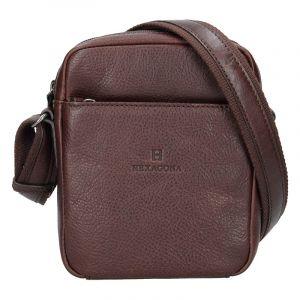Pánská kožená taška přes rameno Hexagona Mauro – tmavě hnědá 16138