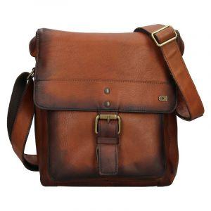 Luxusní pánská kožená taška Daag ALIVE 14 – hnědá 142