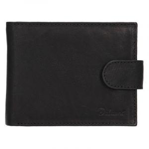 Pánská kožená peněženka Diviley Albert – černá 15254
