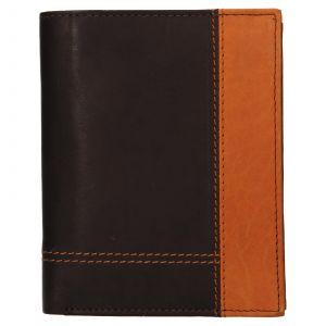 Pánská kožená peněženka Diviley Vilém – hnědá 110702