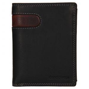 Pánská kožená peněženka SendiDesign Ulrich – černo-hnědá 110733