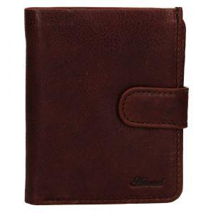 Pánská kožená peněženka Ashwood Harry – hnědá 111794