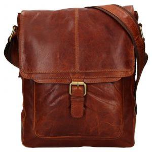 Pánská kožená taška přes rameno Ashwood Edward – tmavě hnědá 111848